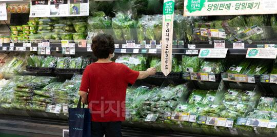 [포토] `0.3% 상승한 7월 소비자물가`